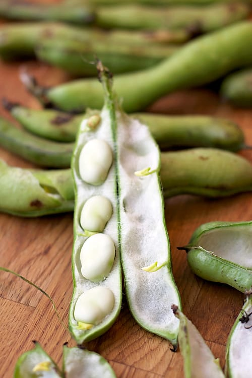 fava beans and the yellow table food with feeling