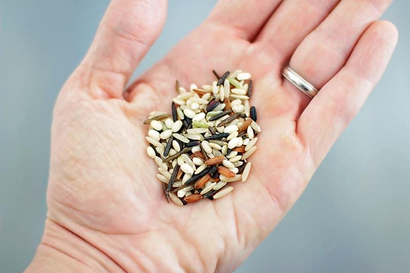 Quinoa-Wild-Rice-Casserole-4