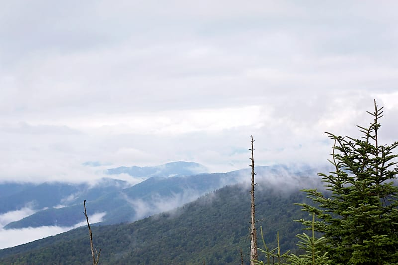 Clingmans-Dome-Hike-3