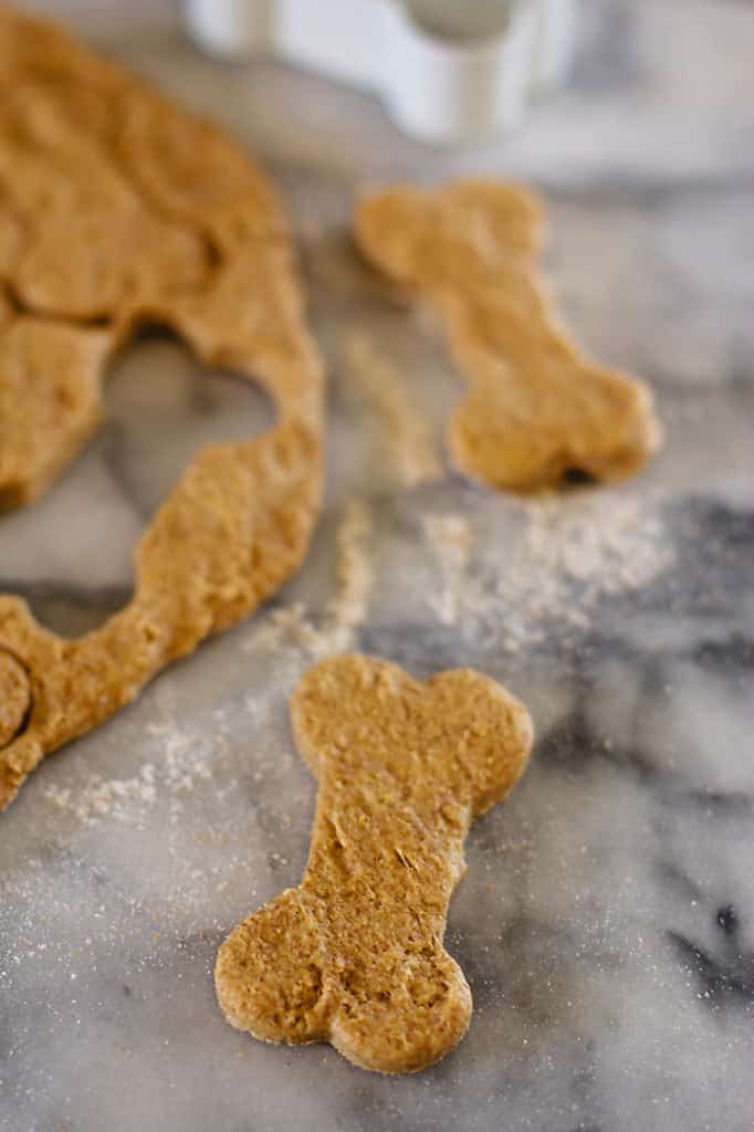 Healthy-Pumpkin-Dog-Treats-11