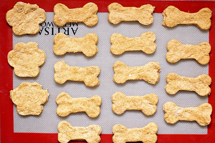 Healthy-Pumpkin-Dog-Treats-20