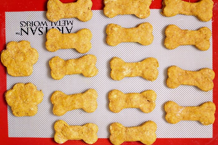 Healthy-Pumpkin-Dog-Treats-22