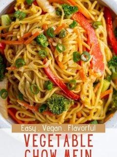 Vegetable Chow Mein | Comida com sentimento 2